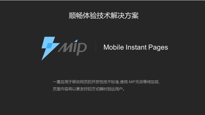 MIP技术