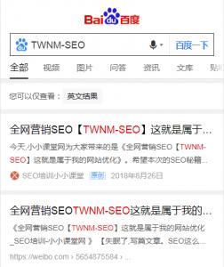 TWNM-SEO